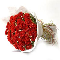 a beauty full bunch of 24 carnations wrapped with white paper