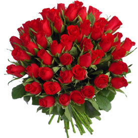 rush of red roses with love